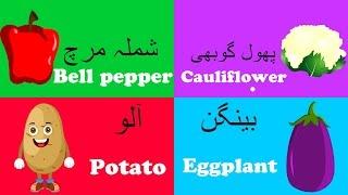 Vegetables Song in Urdu and More | سبزیوں کا نام |  Urdu Nursery Rhyme Collection for Babies