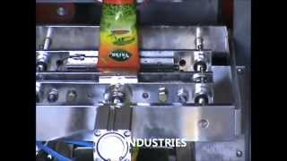 Pouch Packing Machine (S P Industries)