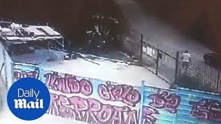 Alarming CCTV footage shows man throwing puppy over spiked fence - Daily Mail