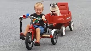 Warning! This Will MELT YOUR HEART - Cute BABIES, KIDS and Animals Compilation