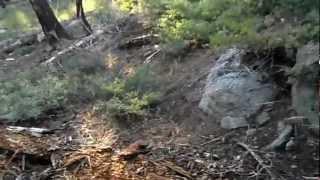 Bear River Reservoir - Part 9