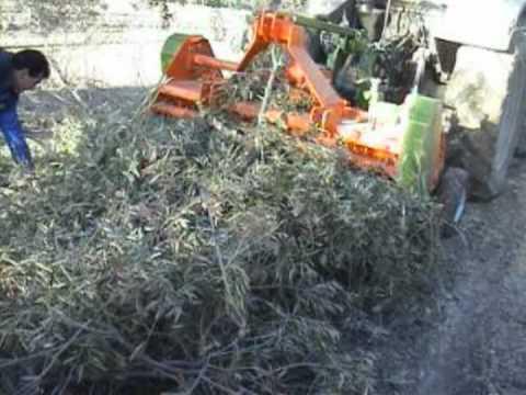 Trituradora de picado fino PROMAGRI para poda de olivar