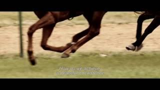Stefan Zweig, Farewell to Europe / Stefan Zweig, adieu l'Europe (2016) - Trailer (English Subs)
