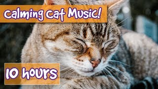 How to Calm Your Cat Down? Music to Relax and Calm Anxious Cats, Relieve Stress, Help with Sleep! 🐈