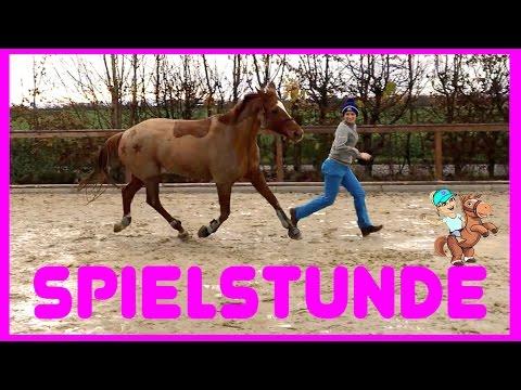 FREIE BODENARBEIT I Spielstunde mit Natural Horsemanship Übungen I Stick to me Wölbchen