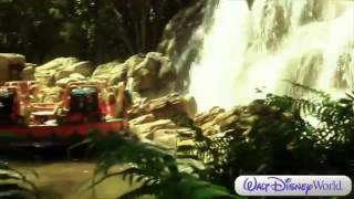Disney 39 s Animal Kingdom Theme Park Overview Walt Disney World Disney Parks