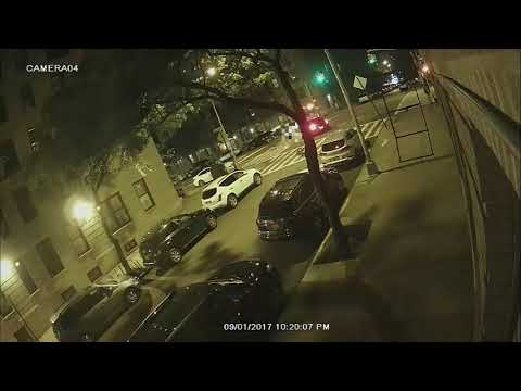 Xxx Mp4 Washington Heights Hit And Run Woman Walking Dog 3gp Sex