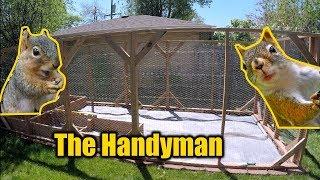 Squirrel/Rabbit Proof Garden Enclosure | THE HANDYMAN |