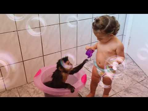 Xxx Mp4 Skinner E Alice Brincando No Banho 3gp Sex