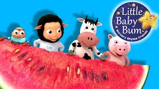 Down By The Bay | Nursery Rhymes | By LittleBabyBum!