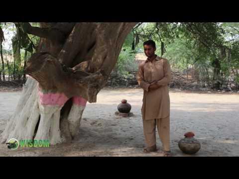 Hamd e Bari Tala poet Mehboob Sarmad chak 31 Mastanwali Jaranwala Faisalabad Punjab Pakistan