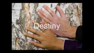 Selected Wedding Song