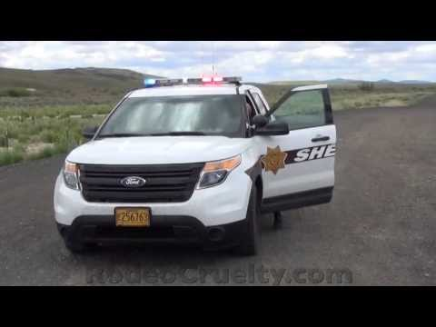 Corrupt Cops Caught by Their Own Cruiser Camera