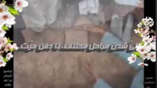 حمله حیوانات وحشی به جنازه میت در عالم برزخ و علت و سرانجام آن (English - فارسی - العربیة)