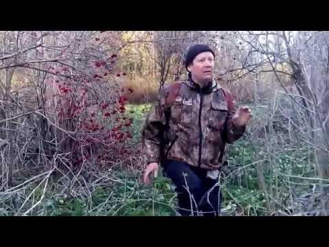 зимовка в тайге видео охота рыбалка