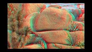 Burgers' Zoo 3D Anaglyph red cyan