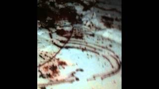 Possible Werewolf Attack-Found Footage