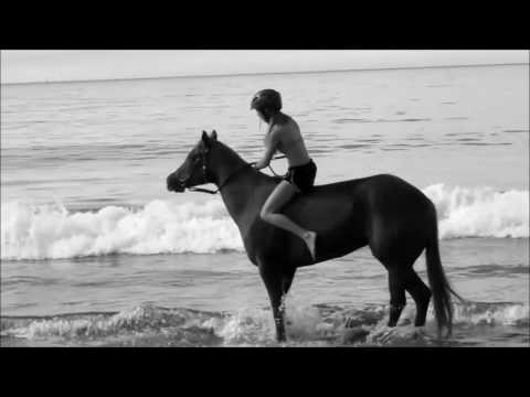 Horse Music video~In the name of love