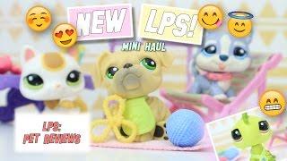 LPS: New Japanese Charm Kitty, Husky, & Bulldog + Extras! (Mini-Haul)