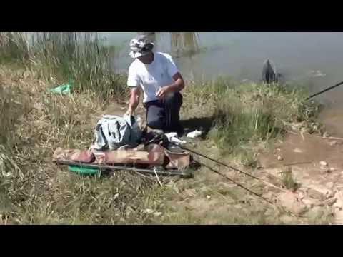 Pescuit caras la balta Caldararu 2013