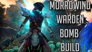 ESO Morrowind - WARDEN BOMB BUILD! (Elder Scrolls Online Morrowind MagDen Build)