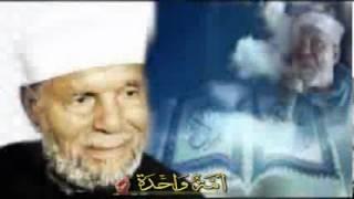 كلمة الشيخ الشعراوي عن مصر كاملة litolover