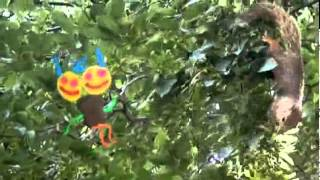 Squirrel Monster - Neave TV