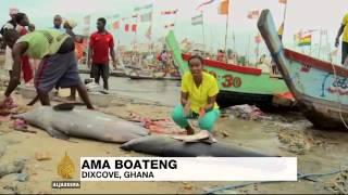 5973 economics 008 002 Al Jazeera Ghana