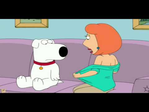 Xxx Mp4 Family Guy Lois Cheats On Peter With A Dog 3gp Sex