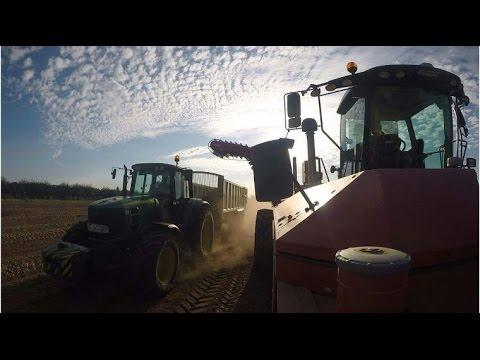 PG RIX farms onion harvest 2016