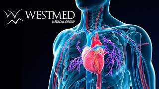 WESTMED Vascular Surgery