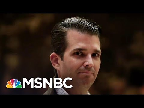 Who Is Leaking Damaging Information On Donald Trump's Oldest Son? | The 11th Hour | MSNBC
