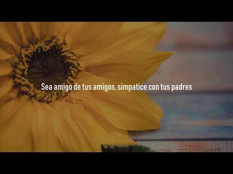 🎵 Tranzas Un Nuevo Amor Letra