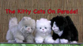 The Kitty Cats On Parade 12 23 11   Large
