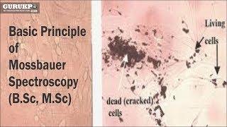 Basic Principle of Mossbauer Spectroscopy (B.Sc, M.Sc)