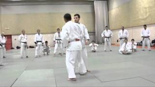 Katanishi Sasae Tsurikomi Ashi 1