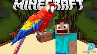 Minecraft | Build Battle : นกเเก้วเเฉนฉวย (มั้ง?)