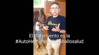 Tratamiento atrofia de maseteros #AutoHemoTerapia Dr. Carlos Federico Rodríguez Garantón