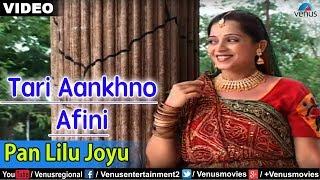 Pan Lilu Joyu | Gujarati Romantic Song | Sonali Vajpayee
