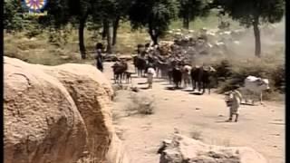Fulbe Sudan