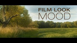 Tutorial: Film Look & Mood