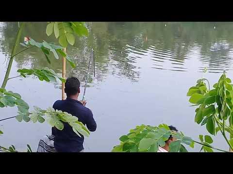Xxx Mp4 Amazing Fishing Videos Best Fishing Hunting Videos मछली पकड़ने का वीडियो Part 2 3gp Sex