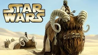 Top 9 Star Wars Creatures and Pets - Star Wars Revealed | Star Wars HQ