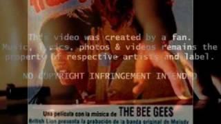Teach Your Children Lyrics-Crosby Stills  Nash & Young -Melody Soundtrack