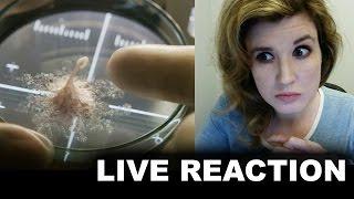 Life 2017 Trailer Reaction