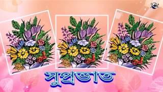 Bengali বাংলা ভাষা শুভ সকাল ফুল সকলের জন্য সবাই শুভেচ্ছা বার্তা