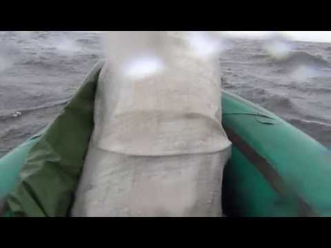 лодка на реке райнер фальк