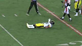 Steelers LB Ryan Shazier Injury (FULL VIDEO)
