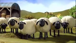 Shaun The Sheep Sheer Madness 2015 DVDRip XViD