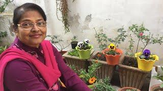 How to manage Winter Garden, Kachi Phulwari, Indian Winter Flowers Garden Tour with Aruna